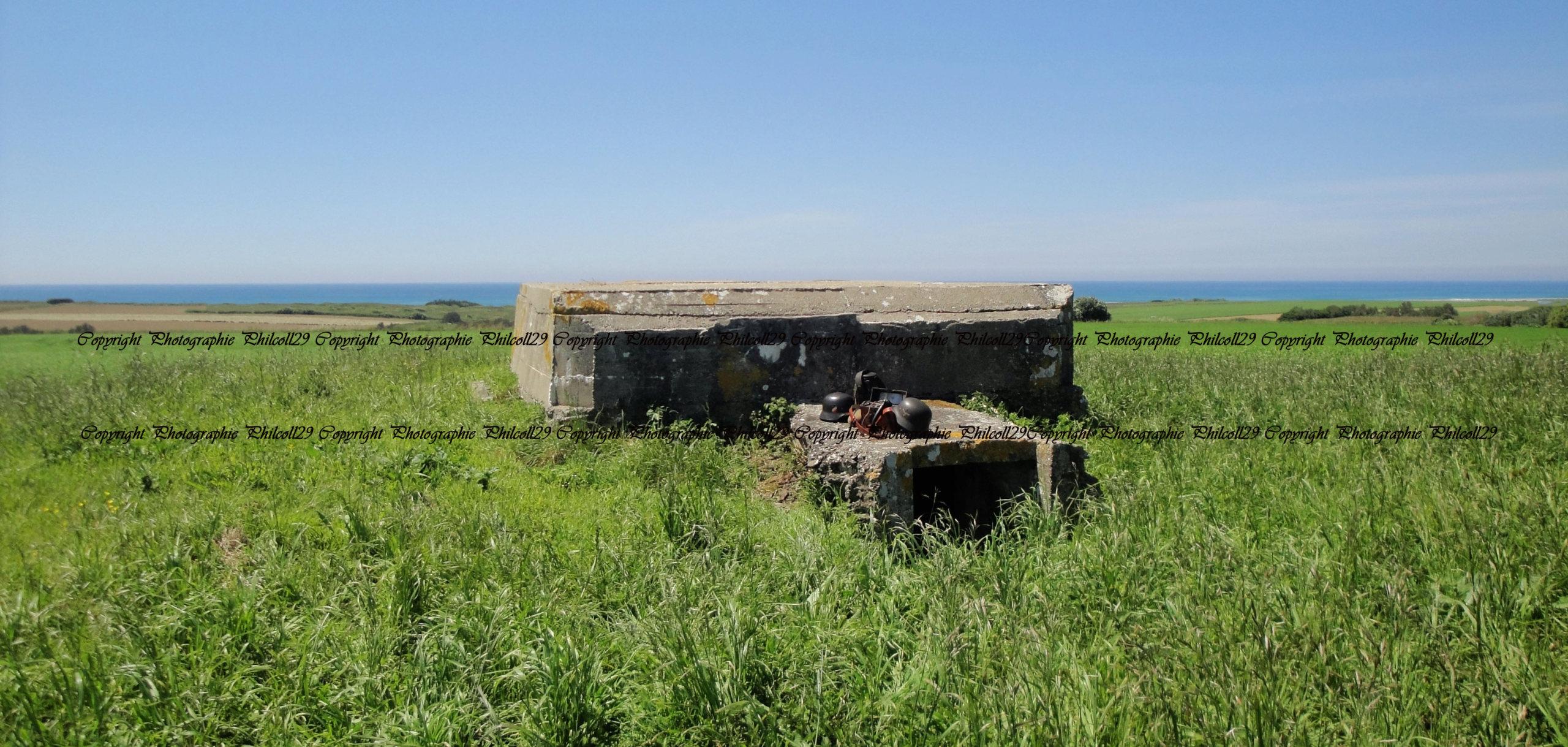 Nature verte Bunker Allemand d'observation  3019