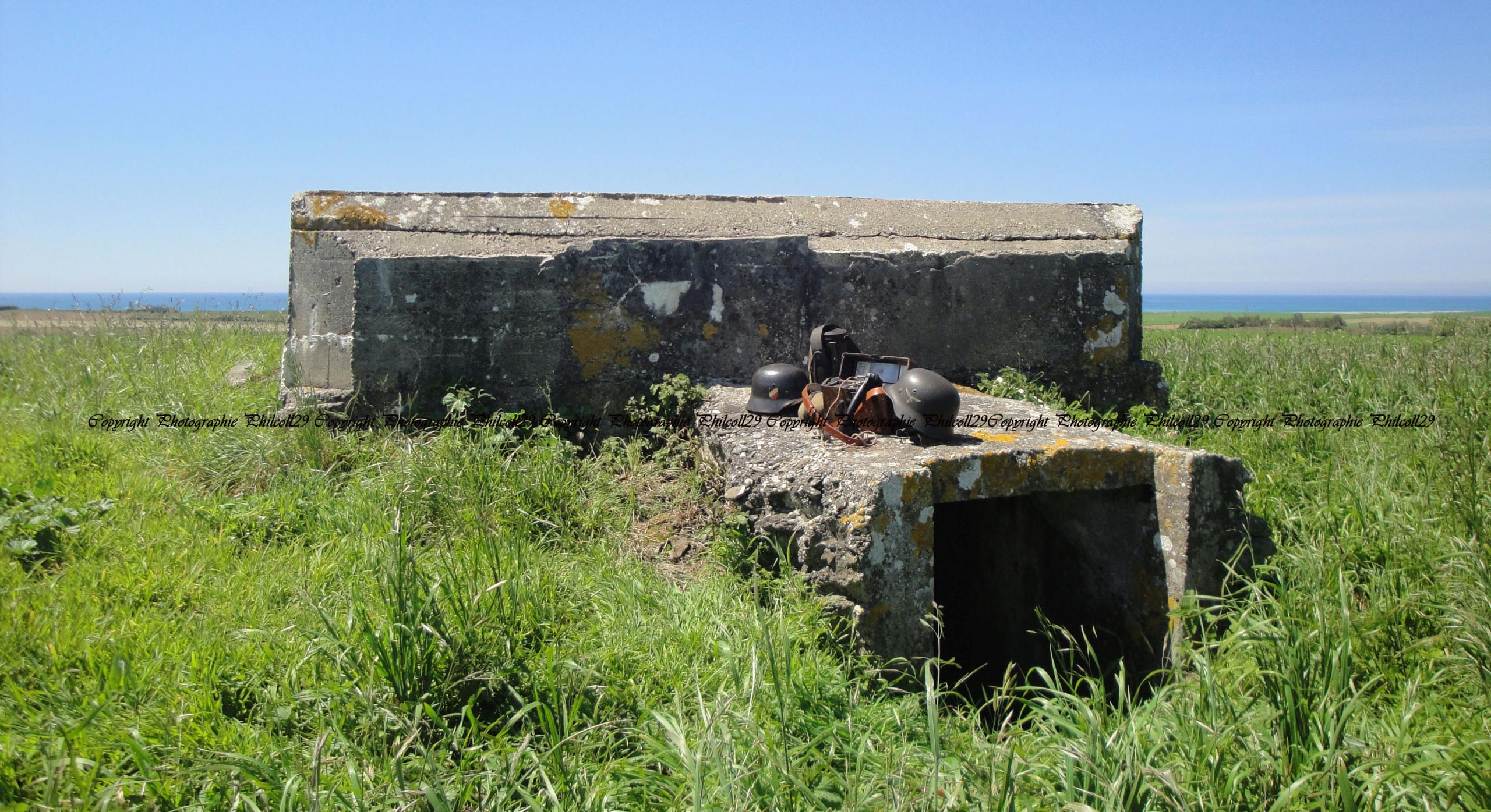 Nature verte Bunker Allemand d'observation  3314