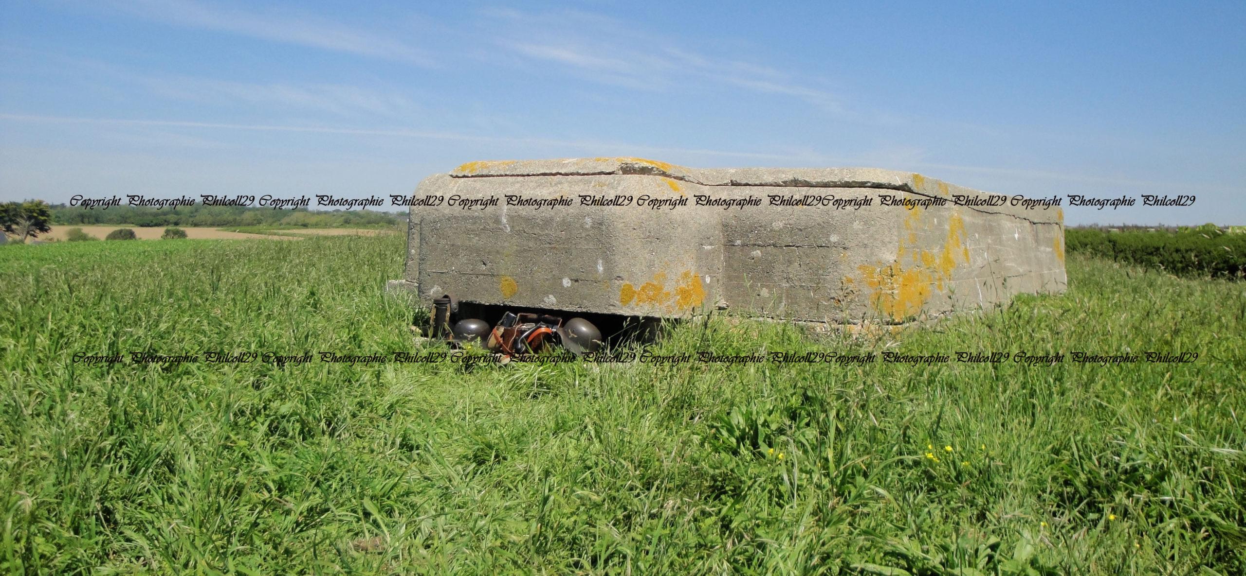 Nature verte Bunker Allemand d'observation  643