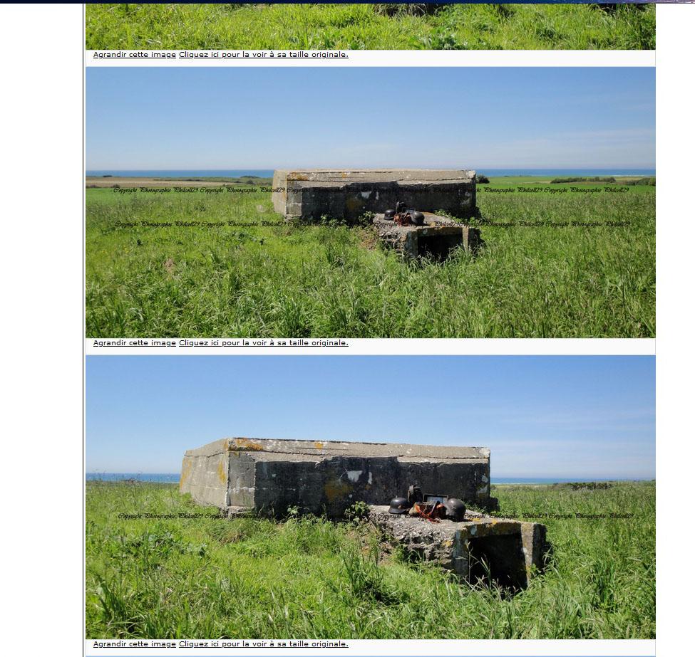 Nature verte Bunker Allemand d'observation  Bunker10