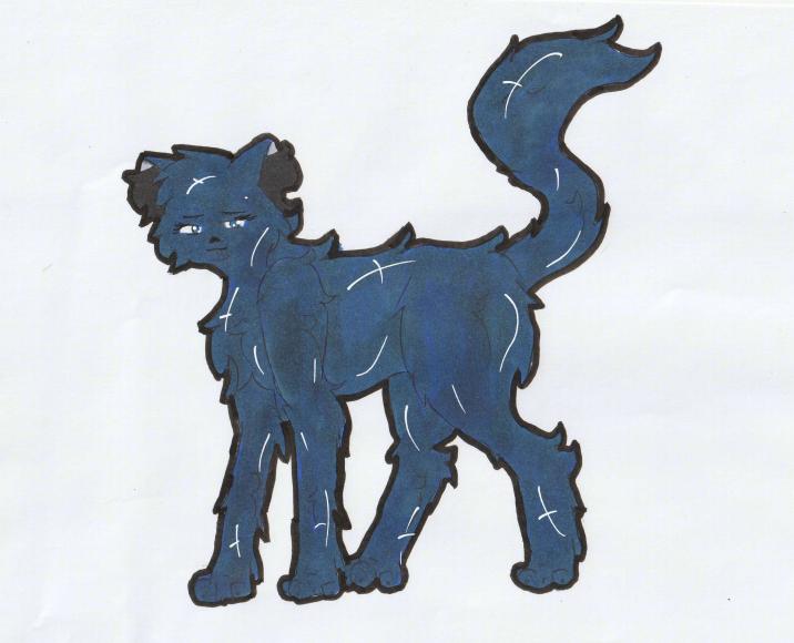 [FERME] La boutique de Kaïgaan ♪♫  - Page 5 Feli_n10