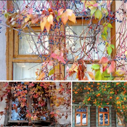 Осень - самое уютное время года - Страница 2 Scree322