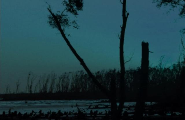 Блуждающие огоньки на болотах  Screen95