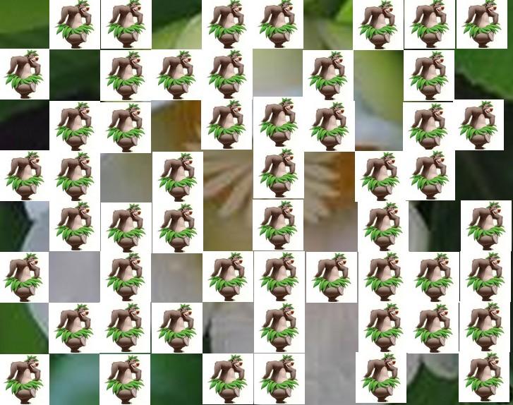 une fleur de Martin 24 septembre trouvé par Ajonc Fleur13