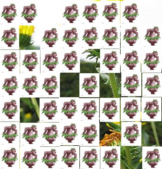 une plante Martin 1er avril trouvée par Jov' Une_pl11
