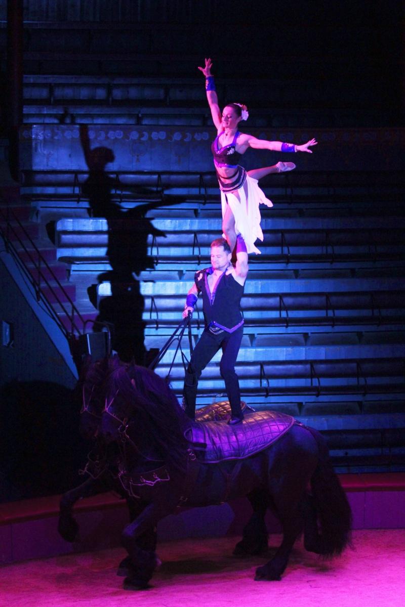 comme tous les ans , en 2019 cirque pour moi en janvier  Jpas_d10