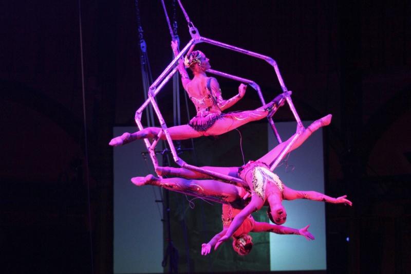 comme tous les ans , en 2019 cirque pour moi en janvier  Lairtr10