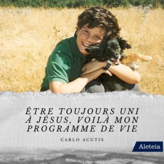 Bienheureux Carlo Acutis mort à 15 ans fête 12 Octobre Carlo-13
