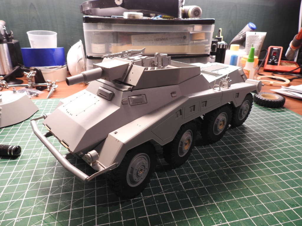 Holiday Build - SdKfz 234 2/3/4 Dscn2818