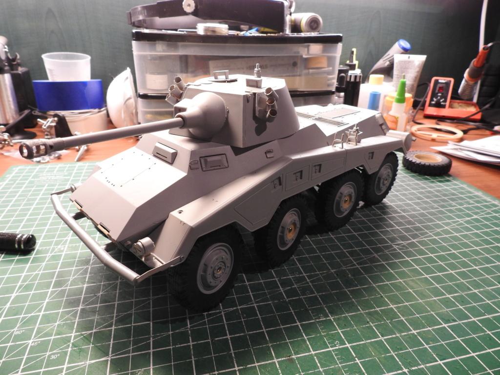 Holiday Build - SdKfz 234 2/3/4 Dscn2819