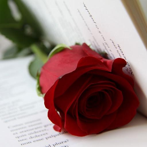 Feliz día del libro. Feliç Sant Jordi. Img_2010