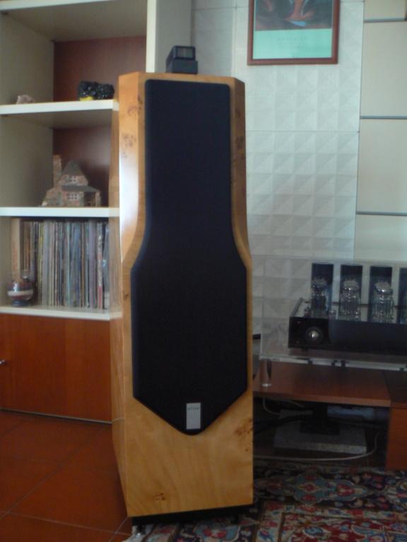 (ROMA) Coppia di diffusori Aesthet Elite 6 3 vie Scan Speak P1030220