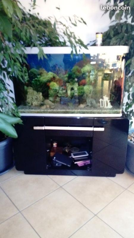 Achat aquarium Aquari10