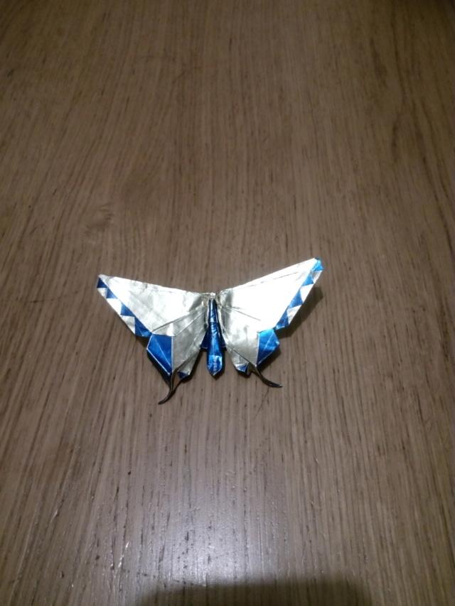papillon bleu & blanc... Papill16