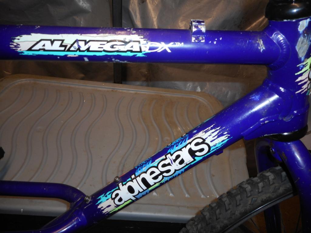 Alpinestars Almega DX Dscn0312