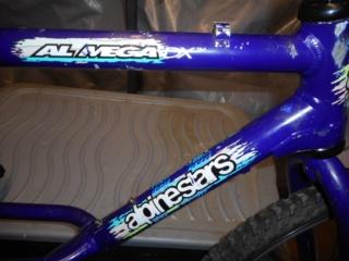 Alpinestars Almega DX Dscn0319