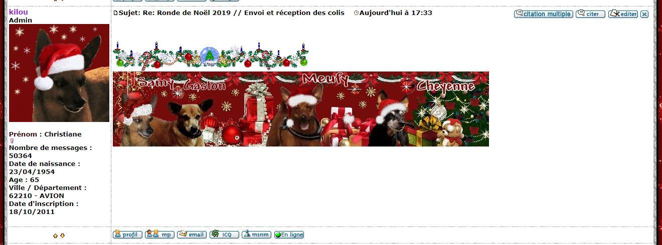 Ronde de Noël 2019 // Envoi et réception des colis   - Page 4 Captur22