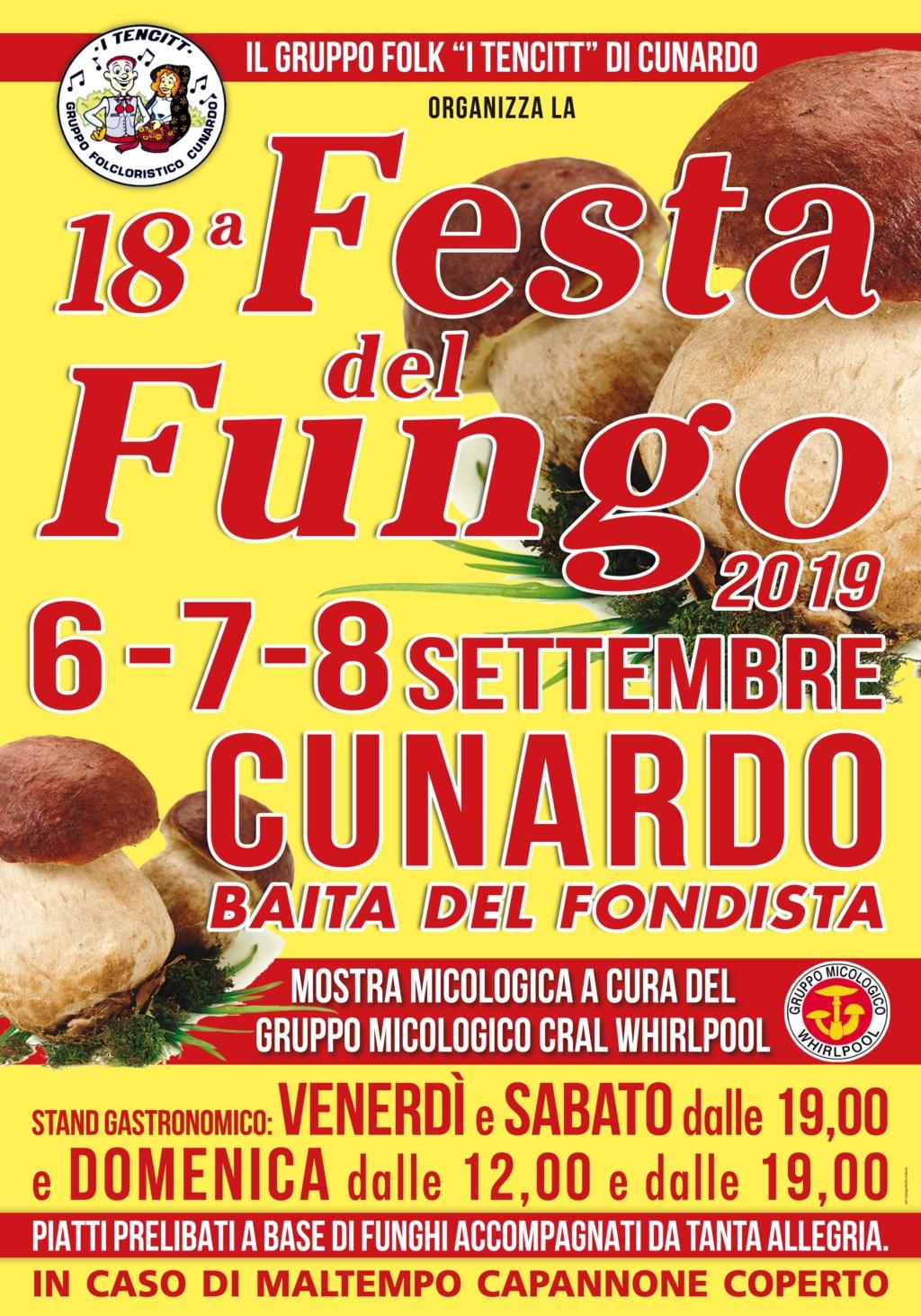 18^ Festa del Fungo - Cunardo (VA) Manife11