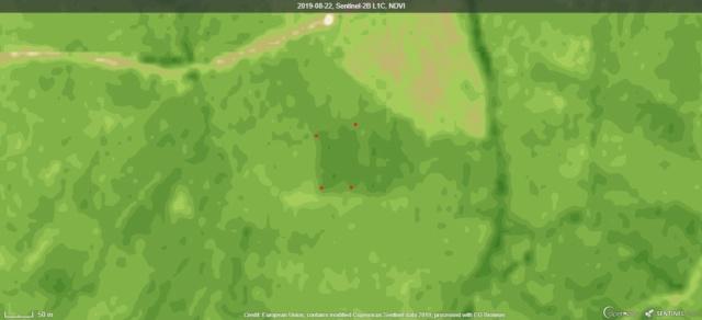 Manejo de suelos y uso de herbicidas - Página 4 2019-012