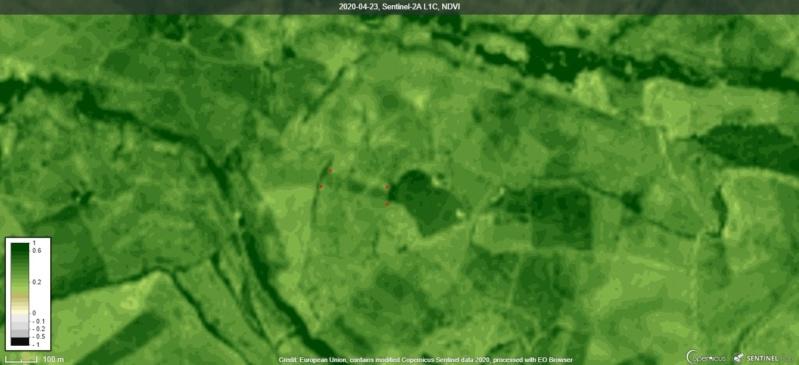 Seguimiento evolutivo/productividad parcela de secano en calar (Jaén) Inked210