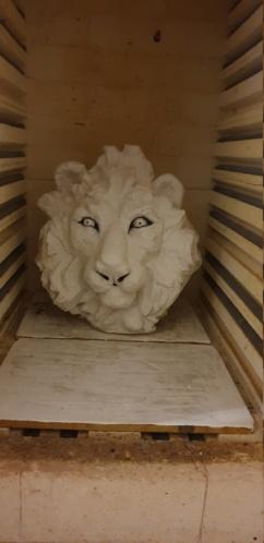 help patine fauve pour fauves Lion10