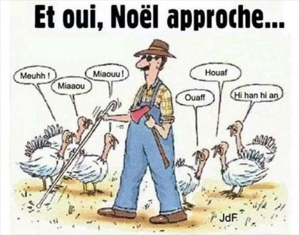 Humour en image du Forum Passion-Harley  ... - Page 40 Img-2014
