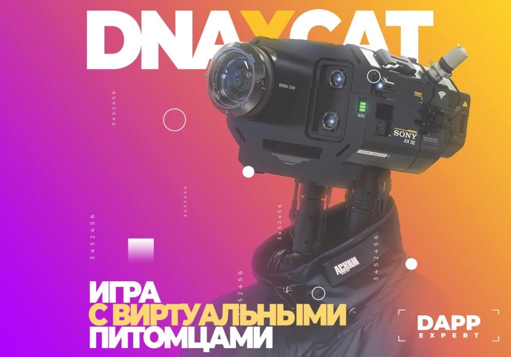 dApp's, Децентрализованные приложения 1-min13