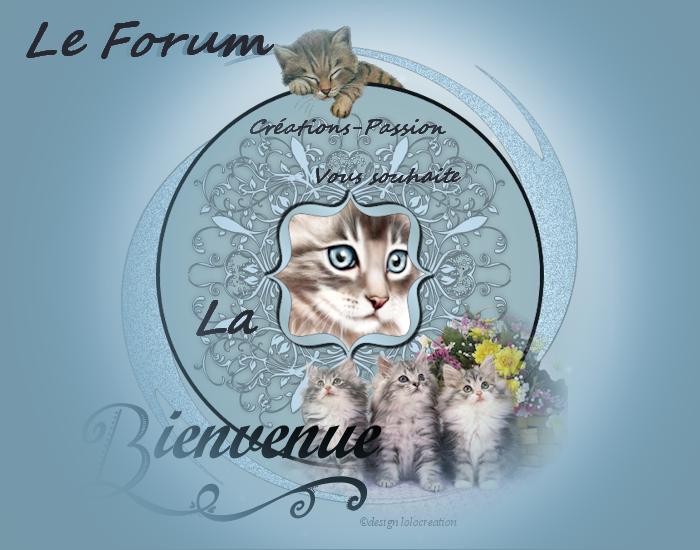 Les loisirs créatifs du forum créations passion