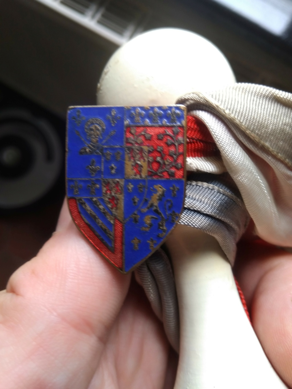 Insigne ornant une quille  Img_3564