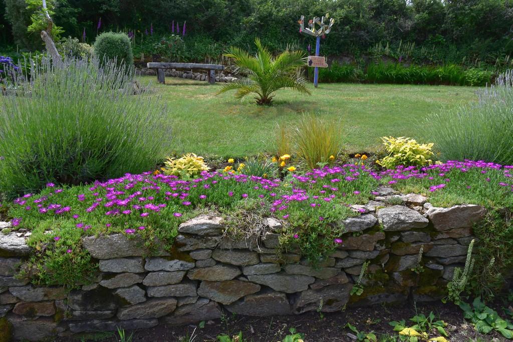 jardin du Ragot Quiberon ! Dsc_3318