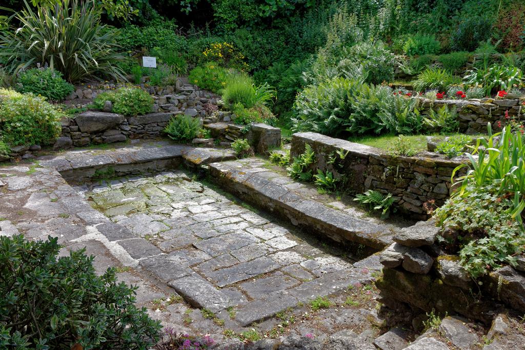 jardin du Ragot Quiberon ! Dsc_3323