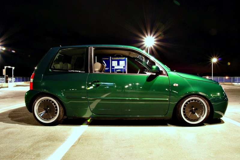 Lupo by MontanaGreen 41351110