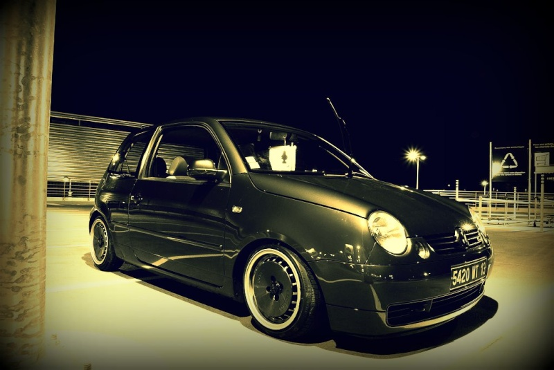 Lupo by MontanaGreen 41355210
