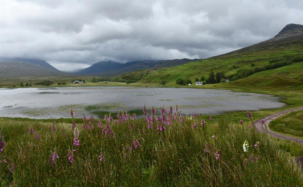 Périple écossais Loch_c10