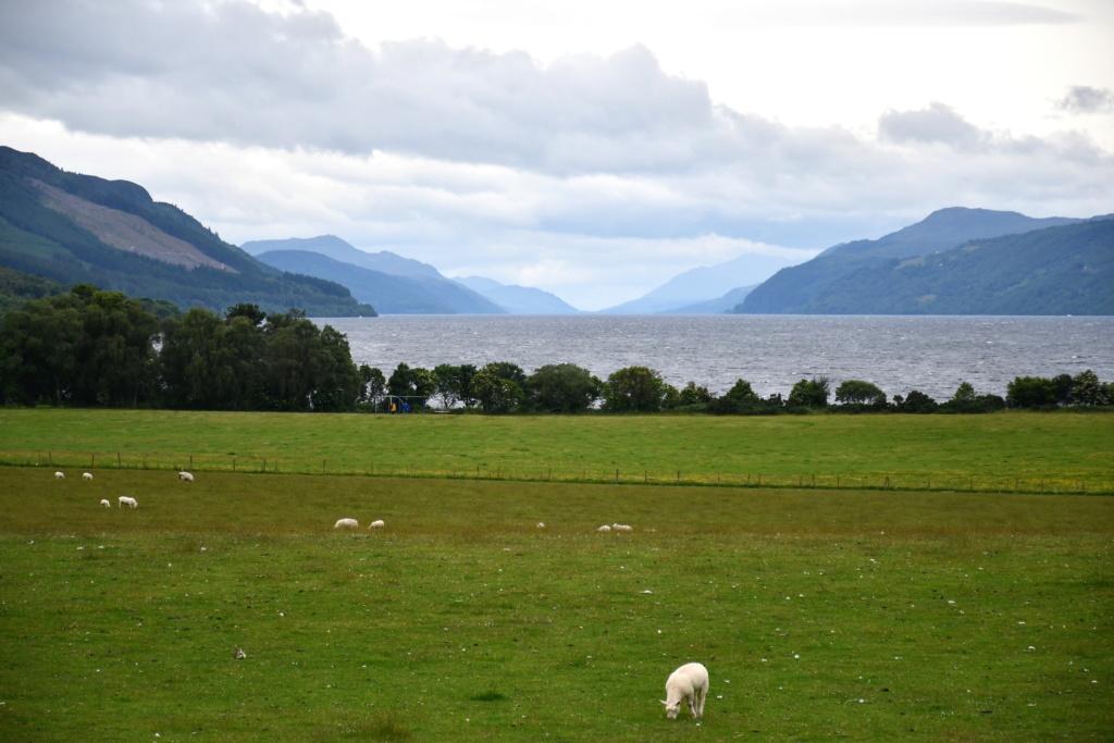Périple écossais Loch_n10