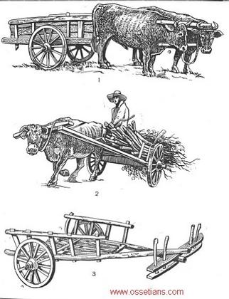 Medios de transporte - Dibujos Dzauma10