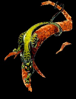 L'encyclopédie anarchique des créatures de Troy Gargun10