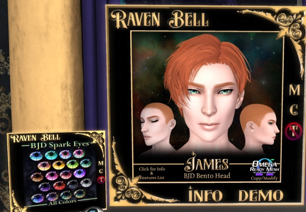 [Mixte] Raven Bell Zidie243