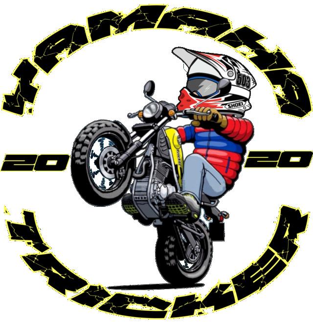 Logo Trickero 2020 Proyec11