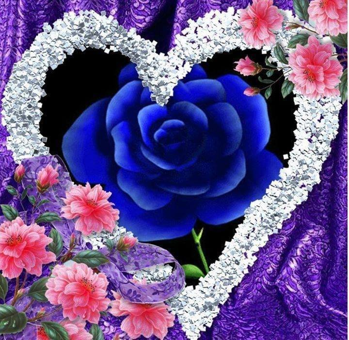 Cveće i romatika - Page 3 E5llib10