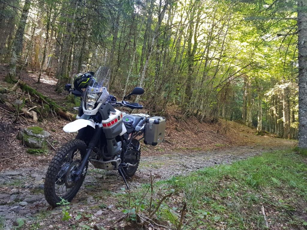 Mini road trip dans le Cantal 20200813