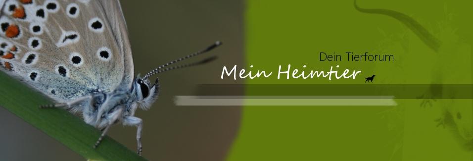 Mein-Heimtier.com