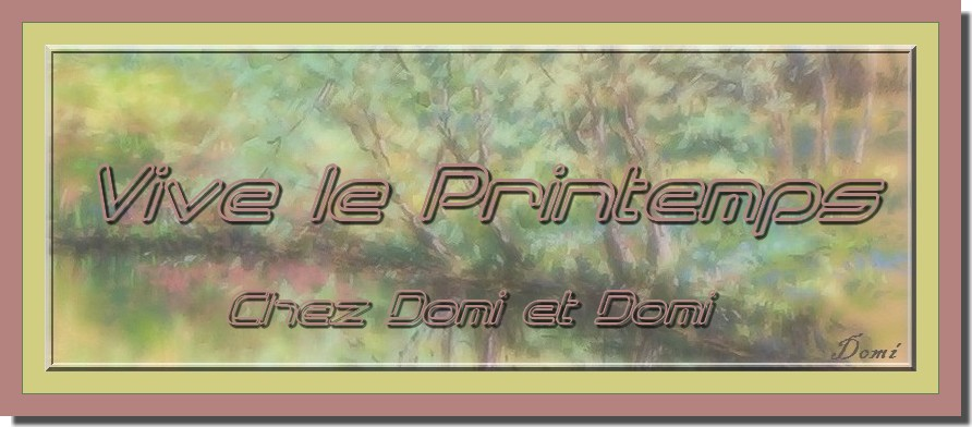 Chez Domi et Domi