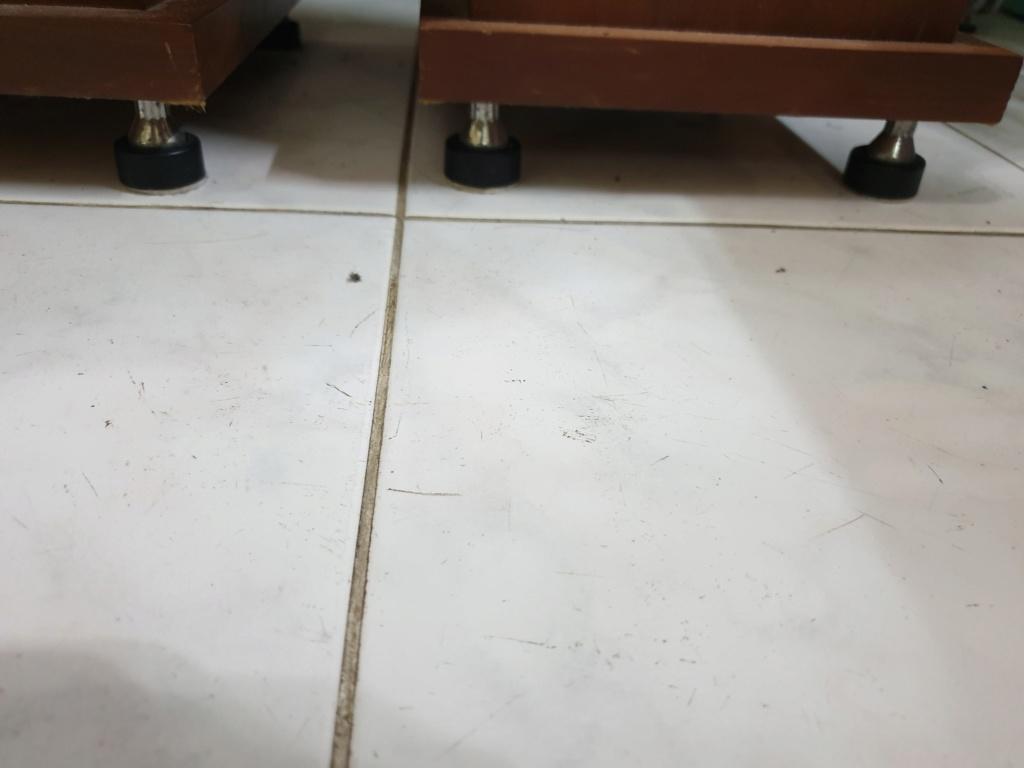 ProAc Response D15 Floorstand Speakers 20191011