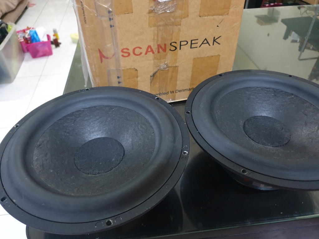 Scan Speak 8' Woofer (Matched pair) used 20201212