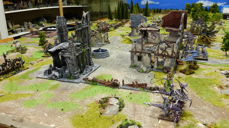 Warhammer Fantasy, Galerie de Batailles - Page 16 P1210426