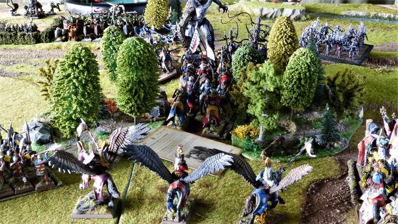 Warhammer Fantasy, Galerie de Batailles - Page 16 P1210432