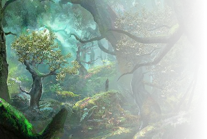 Forêt d'Istralis