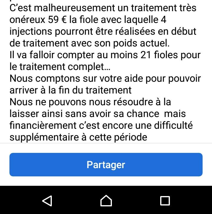 La PIF (péritonite infectieuse féline) - Page 2 _2021110