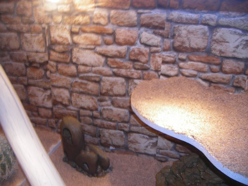 "Mes installations ""provisoires"" Reptil16"